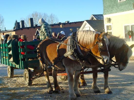 Heritage Park Historical Village: Horse drawn wagon rides