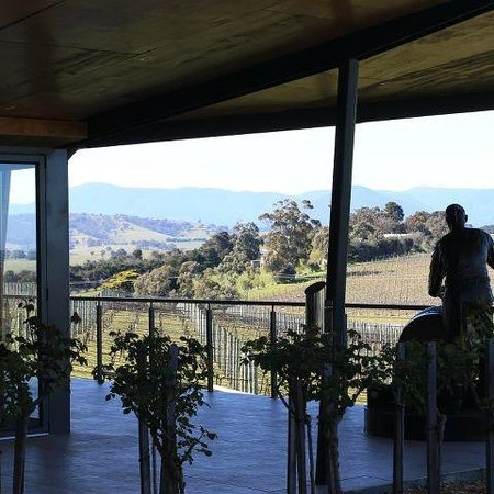 Balgownie Estate Vineyard Resort & Spa: View from the restaurant