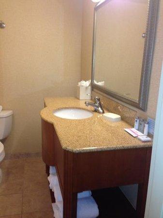 Hampton Inn Louisville Downtown: bathroom