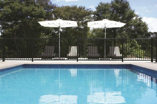 Riverside Matakana: The pool (heated between September and June)