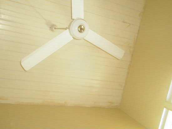 Posada San Jose: techo habitacion con abanico