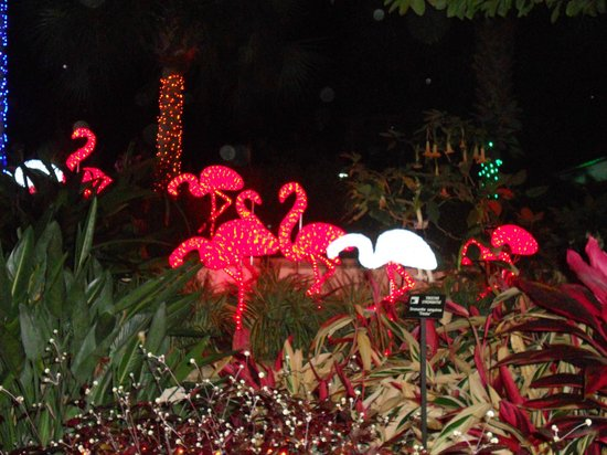 301 moved permanently - Green bay botanical gardens christmas lights ...