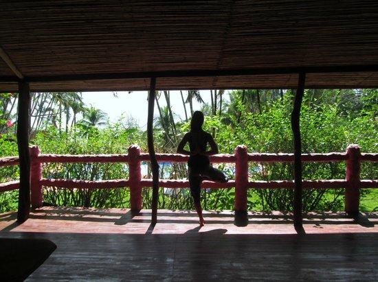 Montezuma Yoga: View overlooking the ocean