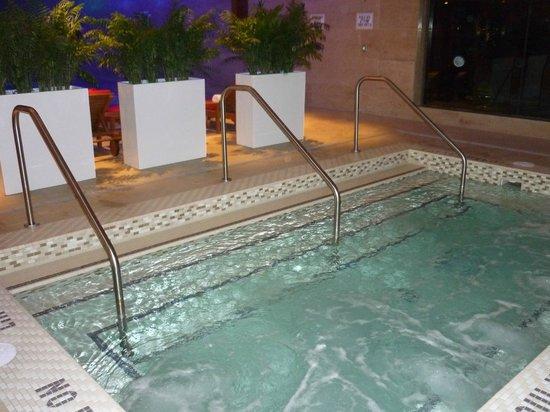 Shangri-La Hotel Toronto : Hot Tub