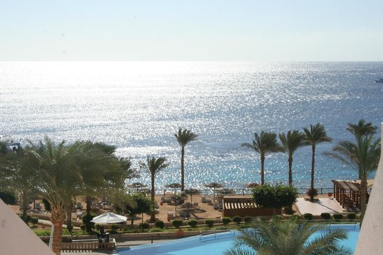 Continental Garden Reef Resort: райский уголок