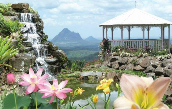 Maleny Botanic Gardens - a panorama of flowers, waterfalls, ponds and Glasshouse Mountain views