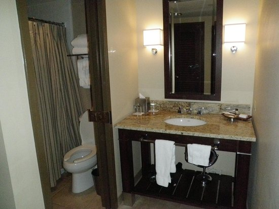 AT&T Hotel and Conference Center: Vanity/bathroom
