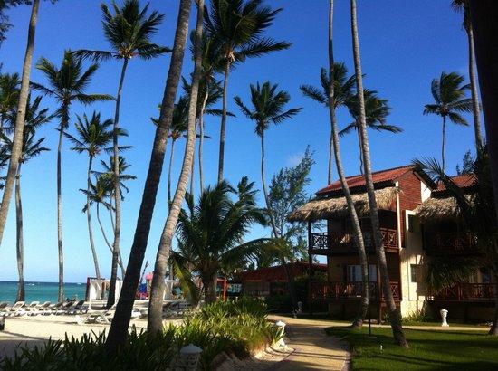 Vista Sol Punta Cana: Strand bei den Suiten, mit privaten Liegestühlen
