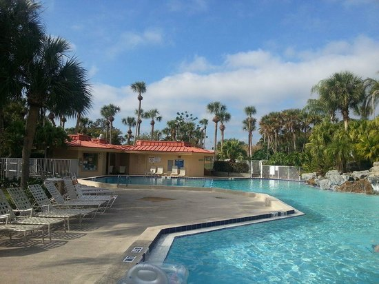 International Palms Resort & Conference Center: clean tidy