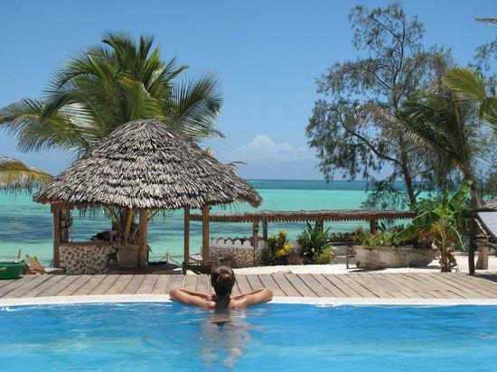Seasons Lodge Zanzibar : Pool with ocean view