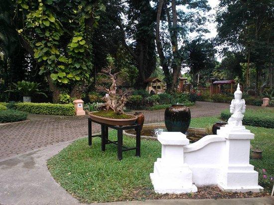 Tao Garden Health Spa & Resort: Walkway on the grounds