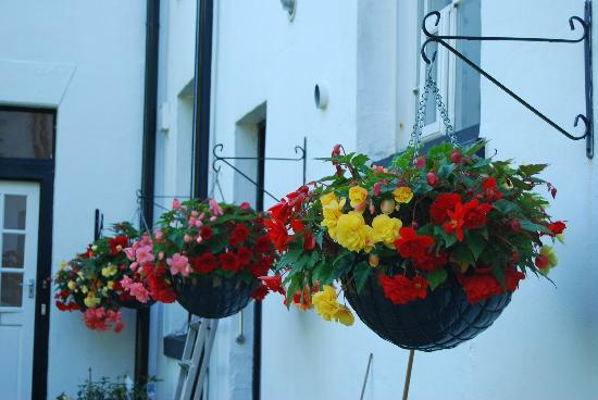 Heath House: Flowers