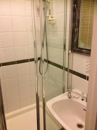 Hamilton's - B&B: Shower room