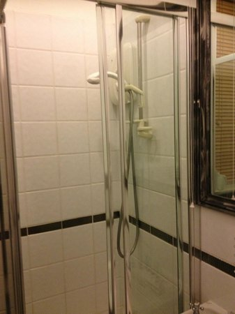 Hamilton's Boutique Hotel: Shower