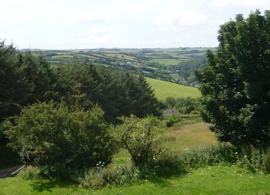 Twitchen Farm: View from Challacombe room