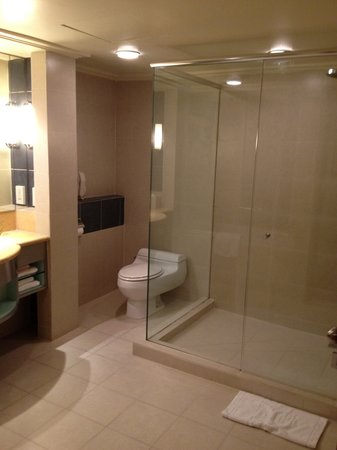 Concorde Hotel Kuala Lumpur: Premier Wing room shower stall
