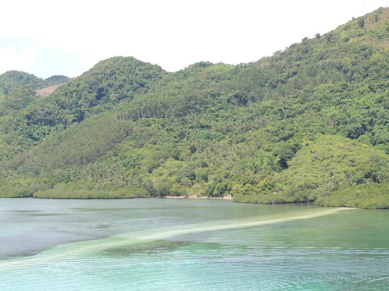 Snake Island (Vigan Island): snake beach