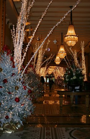 The Roosevelt New Orleans, A Waldorf Astoria Hotel: The Lobby