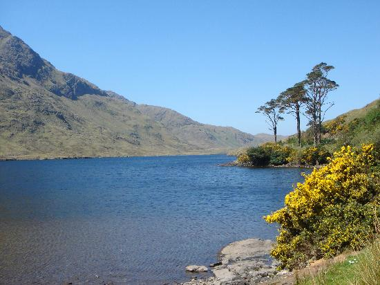 Delphi Lodge Country House: Beautiful Doolough Harbour on the Delphi Estate