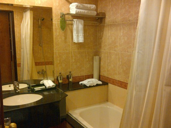 Windsor Plaza Hotel: toilet shower area and bath tub