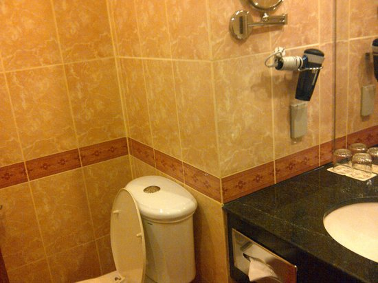 Windsor Plaza Hotel: left side of the toilet from door