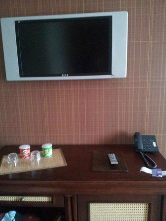 Levoslav House: room1