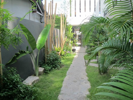 Sairee Sairee Guesthouse: Path