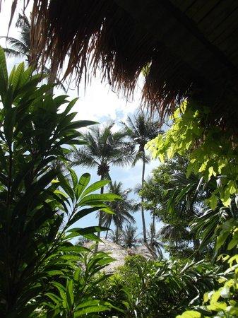 โรงแรมพระนาง อินน์: Guardando verso la spiaggia