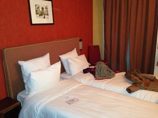 Ibis Styles Paris Eiffel Cambronne : hotel room