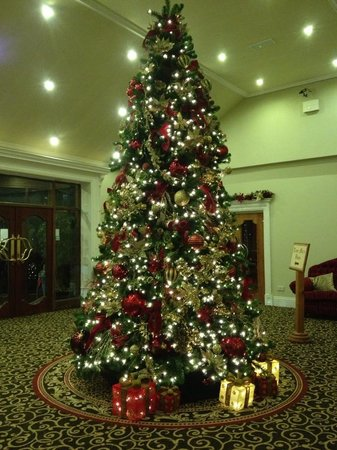 Fitzgerald's Woodlands House Hotel: Christmas Tree in Lobby