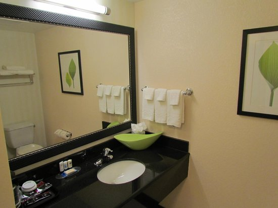 Fairfield Inn & Suites Austin North/Parmer Lane: Well appointed bathroom