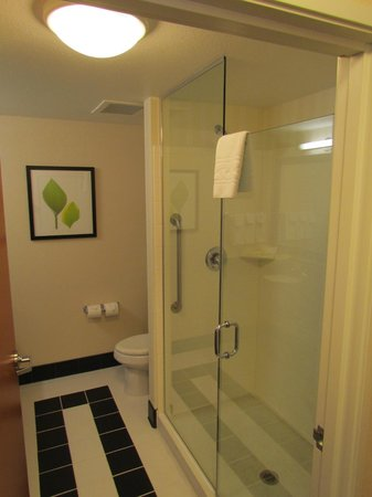 Fairfield Inn & Suites Austin North/Parmer Lane: Good shower