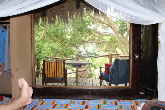 Makalali Private Game Lodge: View from bed thru large picture window