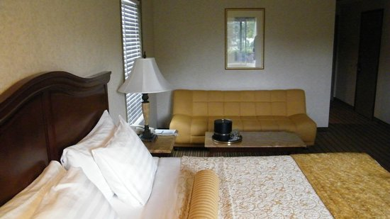 BEST WESTERN PLUS Newport Mesa Inn: sofa area