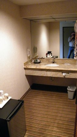 BEST WESTERN PLUS Newport Mesa Inn: bath area
