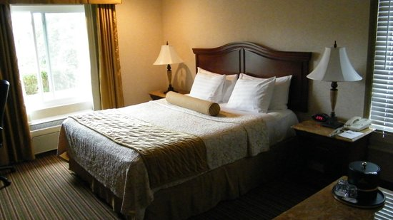 BEST WESTERN PLUS Newport Mesa Inn: king bed