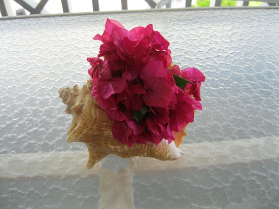Ocean Club Resort: Conch shell with flowers provided by the hotel