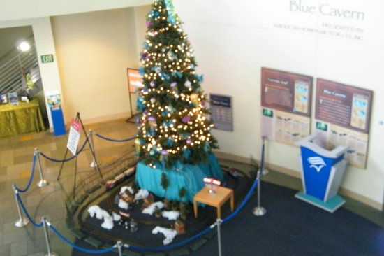 Aquarium of the Pacific: Holiday time at the Aquarium