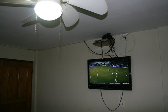 Casa Amarilla: Fan and TV