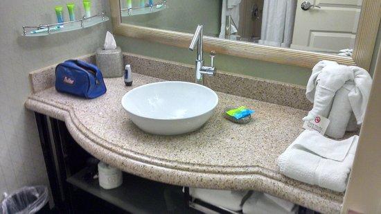 Radisson Hotel Orlando - Lake Buena Vista: Pia