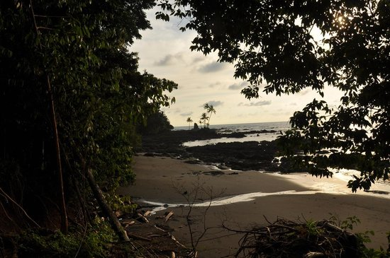 Corcovado National Park: coconut island