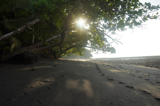 Corcovado National Park: secret sun