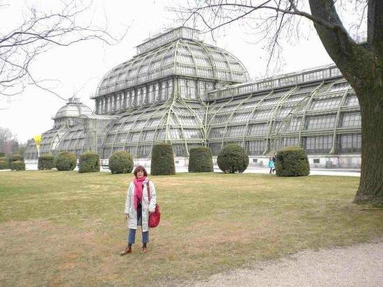 Palmenhaus Schoenbrunn: Verre et acier