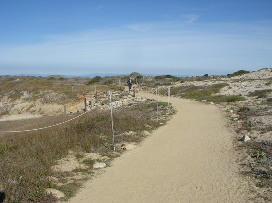 Asilomar Conference Grounds: boardwalk on Asilomar State Beach