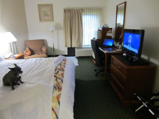 BEST WESTERN Airport Inn: My room