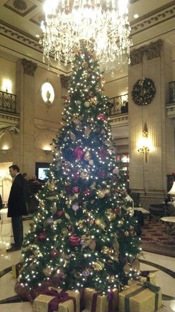 The Roosevelt Hotel: Christmas tree in lobby