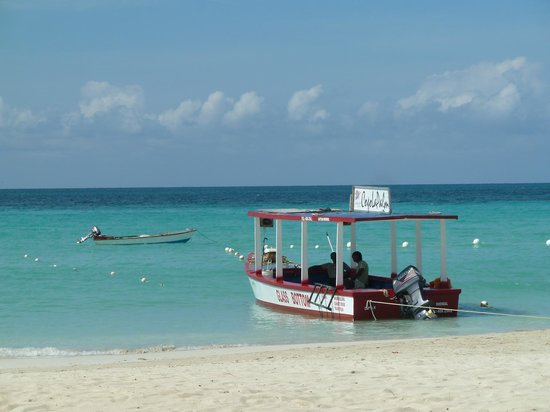 CocoLaPalm Resort: Snorkle boat trips (seperate charge)
