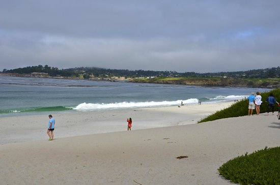 BEST WESTERN PLUS Carmel Bay View Inn: Beach View