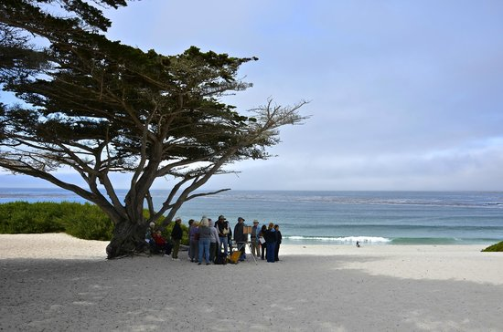 Best Western Plus Carmel Bay View Inn: Ready to Paint a Picture