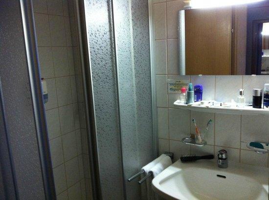 Edelweiss Hotel: small bathroom